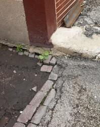 BricksStones_6117