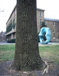 Princeton#6(150)